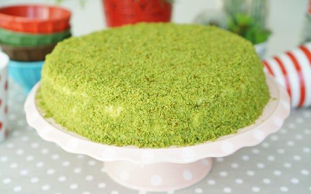 Yeşil Rüya, Ispanaklı Kek Tarifi